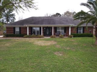4809 Easy St, Orange Beach, AL 36561 (MLS #251278) :: Jason Will Real Estate