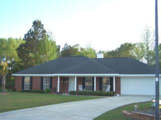406 Meadow Ln, Foley, AL 36535 (MLS #251311) :: Jason Will Real Estate
