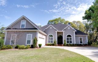 17696 Hitching Post Circle, Fairhope, AL 36532 (MLS #251316) :: Jason Will Real Estate