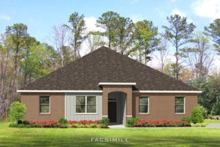 31427 Hoot Owl Road, Spanish Fort, AL 36527 (MLS #251325) :: Jason Will Real Estate