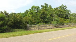 0 Laurent Rd, Magnolia Springs, AL 36555 (MLS #251439) :: Jason Will Real Estate