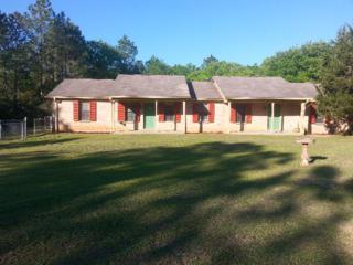 22121 Burkowski Lane, Gulf Shores, AL 36542 (MLS #251951) :: ResortQuest Real Estate