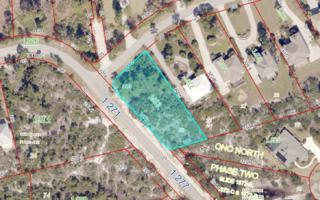 0 Peninsula Dr, Orange Beach, AL 36561 (MLS #251970) :: Jason Will Real Estate