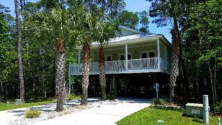 5092 Skiff Ln, Gulf Shores, AL 36542 (MLS #252215) :: Jason Will Real Estate