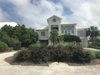 33156 River Road, Orange Beach, AL 36561 (MLS #252370) :: ResortQuest Real Estate