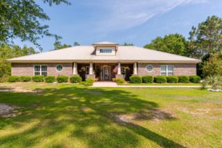 8472 Pinewood Dr, Foley, AL 36535 (MLS #252391) :: Jason Will Real Estate