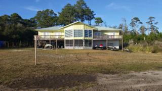 15698 Fort Morgan Hwy, Gulf Shores, AL 36542 (MLS #252536) :: Jason Will Real Estate