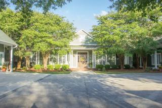 10150 Palao Drive, Lillian, AL 36549 (MLS #252610) :: Jason Will Real Estate