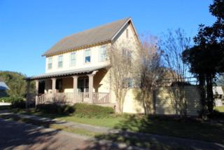 12094 Old Federal Road, Magnolia Springs, AL 36555 (MLS #252627) :: Jason Will Real Estate