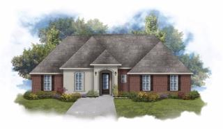1035 Thoresby Drive, Foley, AL 36535 (MLS #252996) :: Jason Will Real Estate