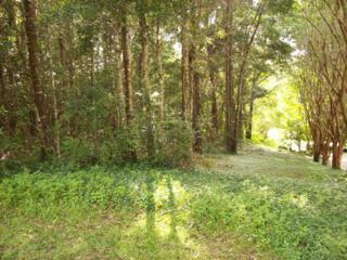 103 Crofton Court, Fairhope, AL 36532 (MLS #253063) :: Jason Will Real Estate