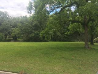 0 Stillwood Ln, Fairhope, AL 36532 (MLS #253122) :: Jason Will Real Estate