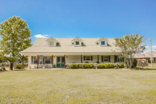 19065 County Road 36, Summerdale, AL 36580 (MLS #253732) :: Jason Will Real Estate