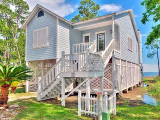12475 State Highway 180, Gulf Shores, AL 36542 (MLS #253924) :: Jason Will Real Estate
