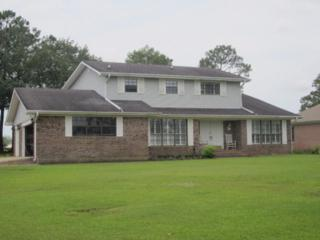 9255 Lakeview Drive, Foley, AL 36535 (MLS #253958) :: Jason Will Real Estate