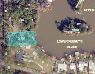 0 Ferry Road, Fairhope, AL 36532 (MLS #254042) :: Jason Will Real Estate