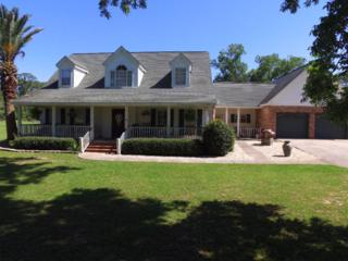 19781 Wilters Street, Robertsdale, AL 36567 (MLS #254071) :: The Kim and Brian Team at RE/MAX Paradise
