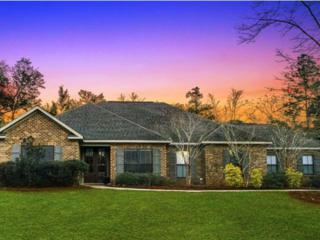 20319 Bunker Loop, Fairhope, AL 36532 (MLS #248894) :: Jason Will Real Estate