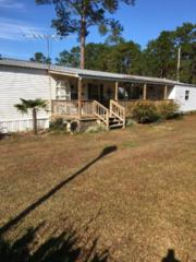 4229 N Wood Glen, Orange Beach, AL 36561 (MLS #251320) :: Jason Will Real Estate