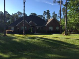 18873 Treasure Oaks Rd, Gulf Shores, AL 36542 (MLS #252574) :: Jason Will Real Estate