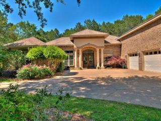 626 Estates Drive, Gulf Shores, AL 36542 (MLS #253287) :: The Kim and Brian Team at RE/MAX Paradise