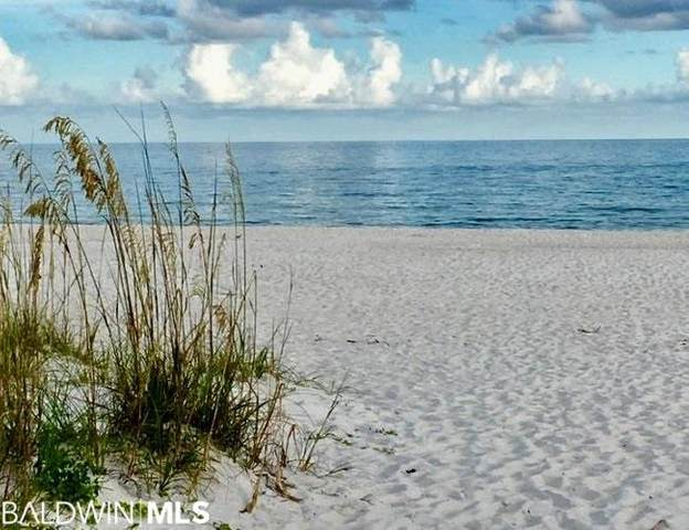 Dolphin Drive, Gulf Shores, AL 36542 (MLS #294290) :: Dodson Real Estate Group