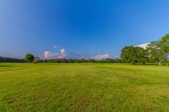 0 Carver Road, Foley, AL 36535 (MLS #260500) :: Gulf Coast Experts Real Estate Team