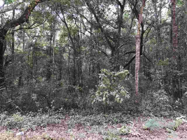 Brantley Lane, Magnolia Springs, AL 36555 (MLS #260686) :: Jason Will Real Estate