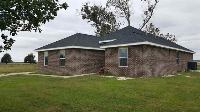 16615 Cold Mill Lp, Foley, AL 36535 (MLS #260793) :: Gulf Coast Experts Real Estate Team