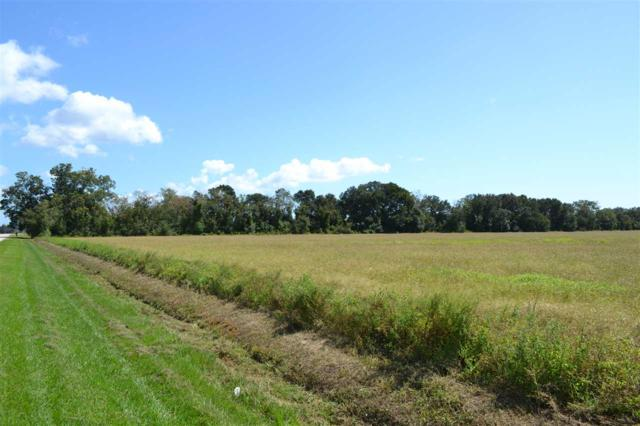0000 County Road 26, Elberta, AL 36530 (MLS #260961) :: Karen Rose Real Estate