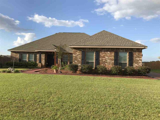665 Parish Lakes Drive, Foley, AL 36535 (MLS #261053) :: Gulf Coast Experts Real Estate Team