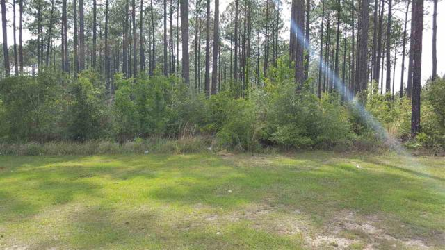 0 Paperwood Road, Chunchula, AL 36521 (MLS #261192) :: Gulf Coast Experts Real Estate Team