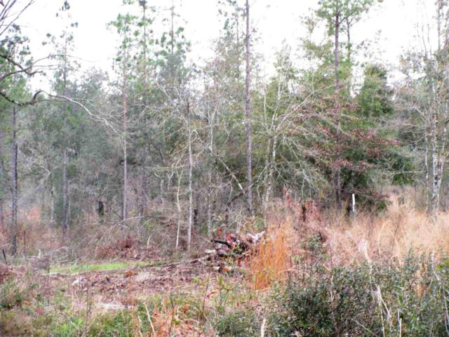 Lot 2 Osprey Lane, Robertsdale, AL 36567 (MLS #261372) :: Elite Real Estate Solutions