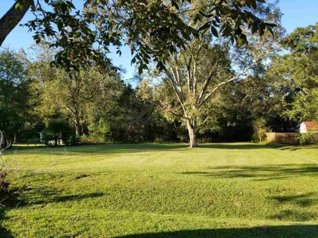 46115 Sellers Ln, Bay Minette, AL 36507 (MLS #261838) :: Gulf Coast Experts Real Estate Team
