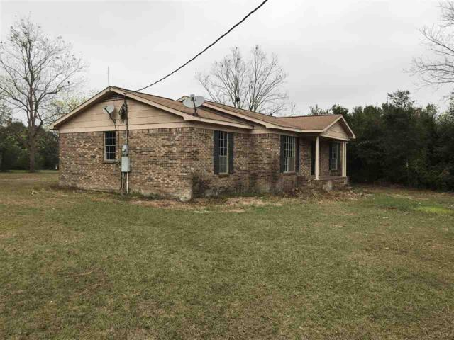 20573 E Silverhill Avenue, Robertsdale, AL 36567 (MLS #262516) :: Elite Real Estate Solutions
