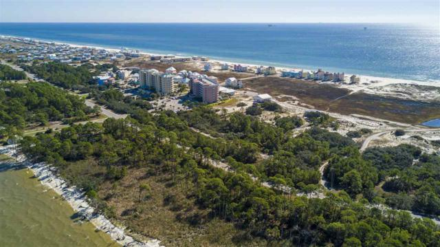 0 Lot 15 State Highway 180, Gulf Shores, AL 36542 (MLS #262540) :: Karen Rose Real Estate
