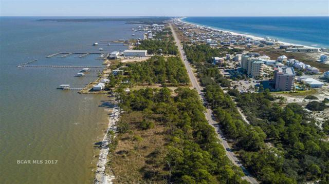 0 Lot 17 State Highway 180, Gulf Shores, AL 36542 (MLS #262838) :: Elite Real Estate Solutions