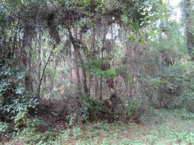 0 E Baudin Lane, Magnolia Springs, AL 36555 (MLS #263111) :: Ashurst & Niemeyer Real Estate
