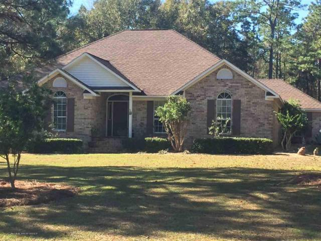8407 Pinewood Dr, Foley, AL 36535 (MLS #263367) :: The Premiere Team