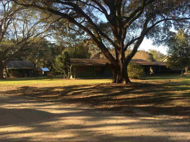 17572 County Road 10, Foley, AL 36535 (MLS #263403) :: Jason Will Real Estate