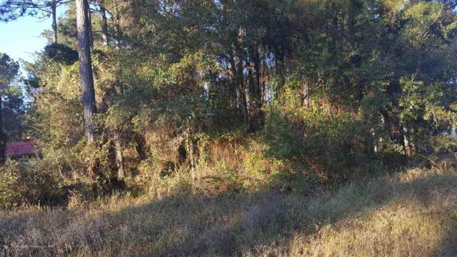 Park Drive Park Drive, Daphne, AL 36526 (MLS #263909) :: Coldwell Banker Seaside Realty