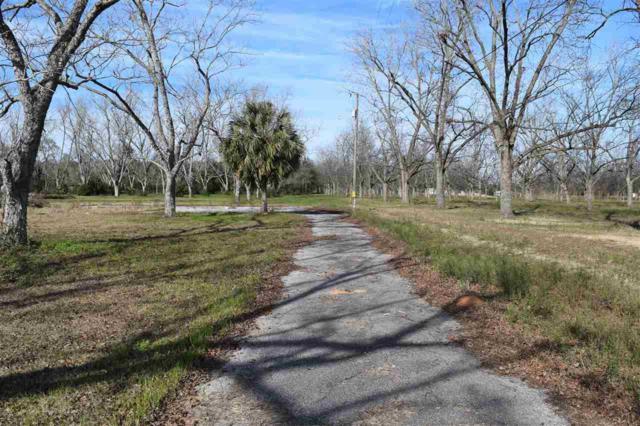 21815 Us Highway 98, Foley, AL 36535 (MLS #263947) :: Gulf Coast Experts Real Estate Team
