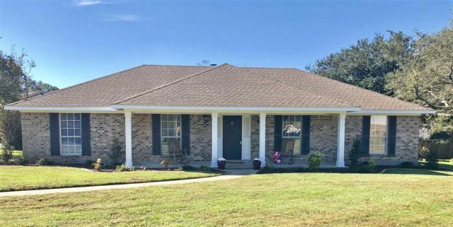 3300 Zephyr Drive, Mobile, AL 36695 (MLS #264120) :: Elite Real Estate Solutions