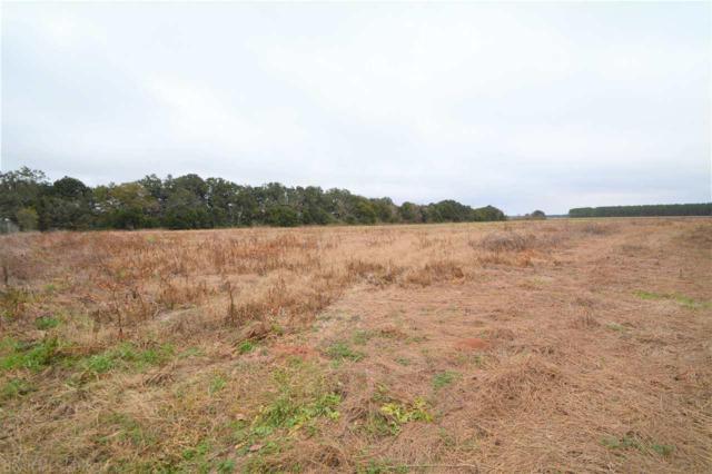 0 County Road 73, Summerdale, AL 36580 (MLS #264160) :: Elite Real Estate Solutions