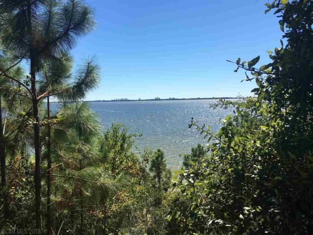 0 County Road 91, Lillian, AL 36549 (MLS #264195) :: Ashurst & Niemeyer Real Estate