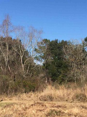 26665 Bruhn Road, Elberta, AL 36530 (MLS #264468) :: ResortQuest Real Estate