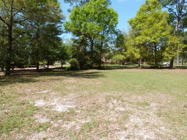 6538 E Quarry Dr, Josephine, AL 36530 (MLS #264868) :: Gulf Coast Experts Real Estate Team