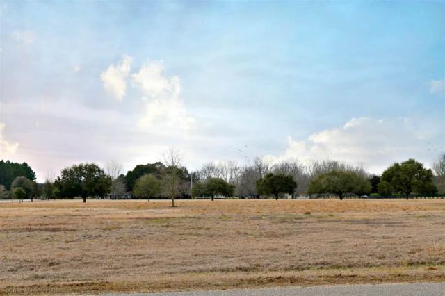 0 Coyote Drive, Spanish Fort, AL 36527 (MLS #265049) :: Gulf Coast Experts Real Estate Team