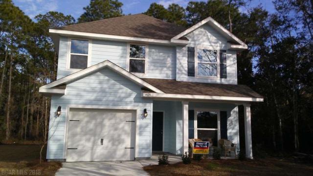 4863 Tiger Brown Ave, Orange Beach, AL 36561 (MLS #265335) :: Ashurst & Niemeyer Real Estate