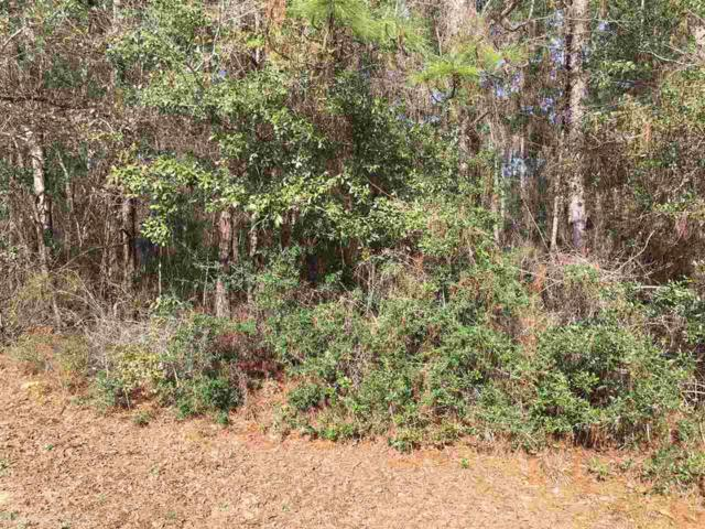 000 Erin Pond Road, Seminole, AL 36574 (MLS #265697) :: Gulf Coast Experts Real Estate Team